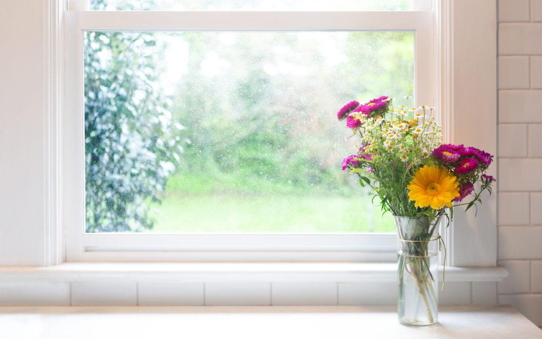 """Del """"Cambiare l'acqua ai fiori"""": resilienza, crescita post-traumatica, anti-fragilità"""